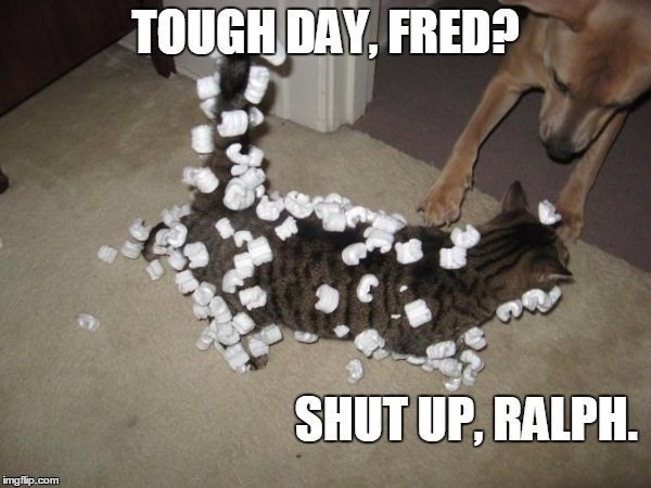Photo caption - TOUGH DAY, FRED? SHUT UP, RALPH. imgflip.com