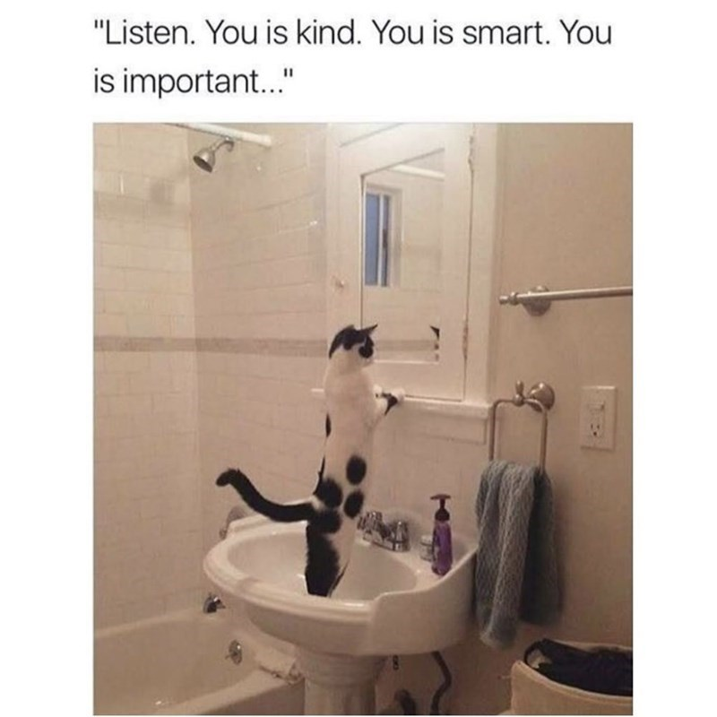 "Bathroom - ""Listen. You is kind. You is smart. You is important..."""