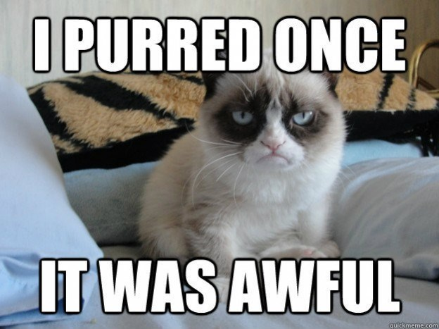 Cat - I PURRED ONCE IT WAS AWFUL quickmeme.com
