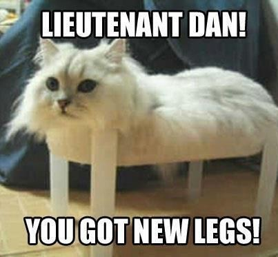 Cat - LIEUTENANT DAN! YOU GOT NEW LEGS!