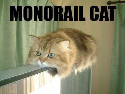Cat - MONORAIL CAT