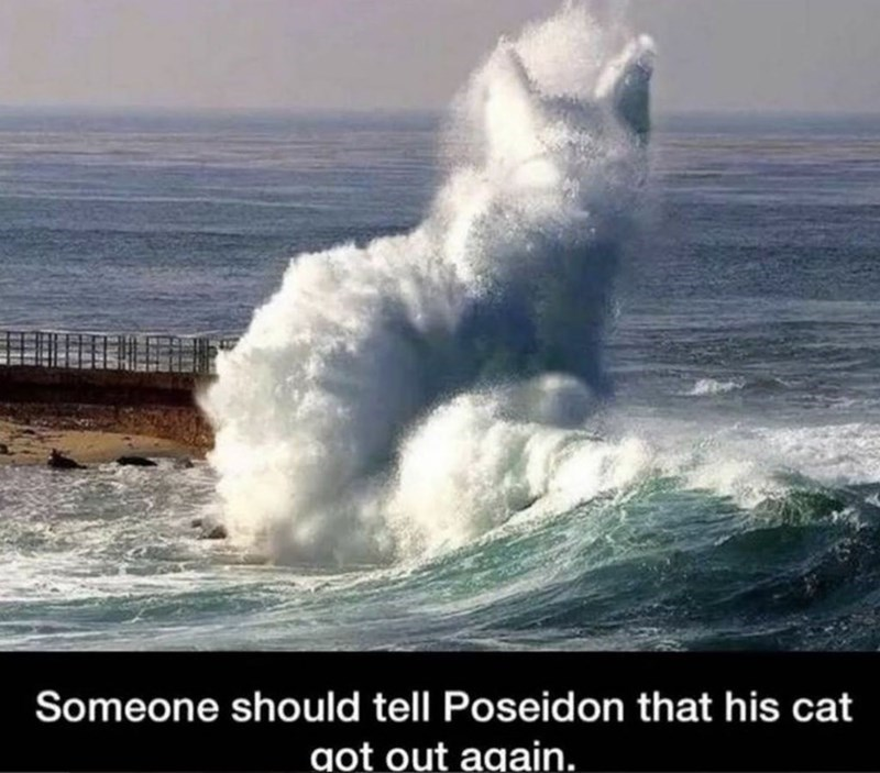 Wave - Someone should tell Poseidon that his cat got out again.