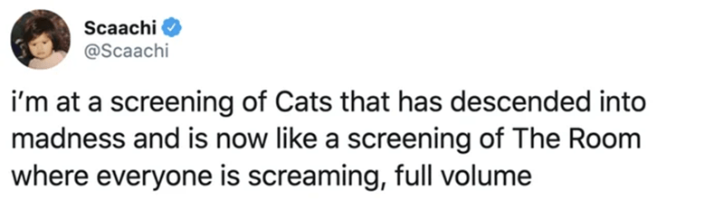 Text - Scaachi @Scaachi i'm at a screening of Cats that has descended into madness and is now like a screening of The Room where everyone is screaming, full volume
