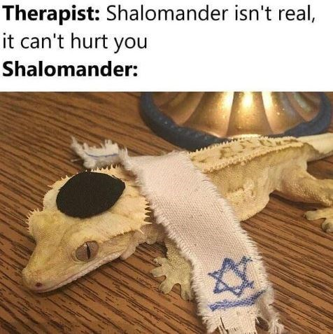 Wood - Therapist: Shalomander isn't real, it can't hurt you Shalomander: