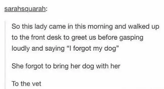 "Text - sarahsquarah: So this lady came in this morning and walked up to the front desk to greet us before gasping loudly and saying ""I forgot my dog"" She forgot to bring her dog with her To the vet"