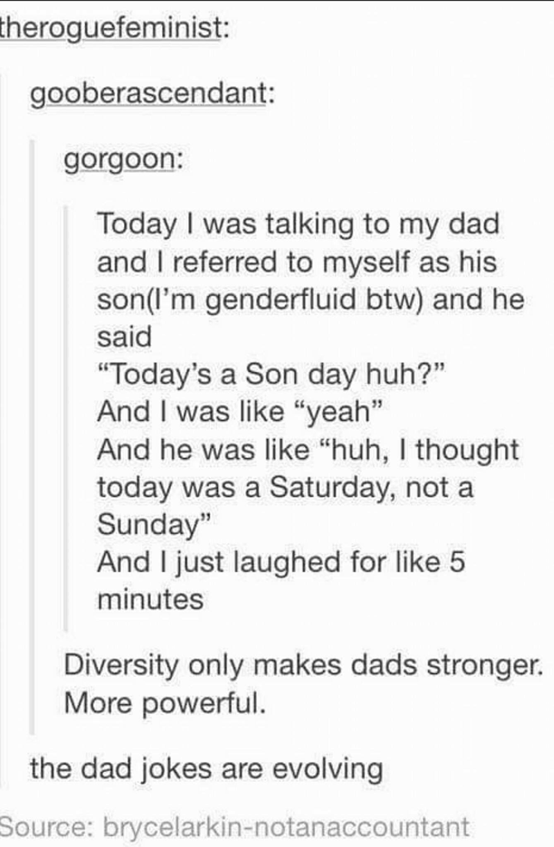 "Text - theroguefeminist: gooberascendant: gorgoon: Today I was talking to my dad and I referred to myself as his son(I'm genderfluid btw) and he said ""Today's a Son day huh?"" And I was like ""yeah"" And he was like ""huh, I thought today was a Saturday, not a Sunday"" And I just laughed for like 5 minutes Diversity only makes dads stronger. More powerful. the dad jokes are evolving Source: brycelarkin-notanaccountant"