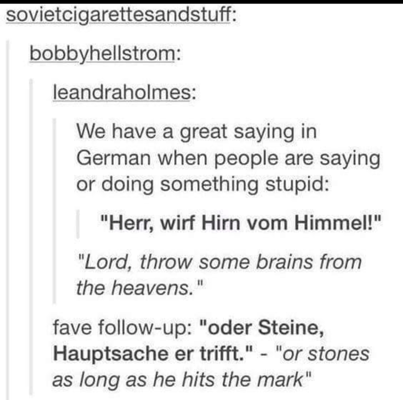 "Text - sovietcigarettesandstuff: bobbyhellstrom: leandraholmes: We have a great saying in German when people are saying or doing something stupid: ""Herr, wirf Hirn vom Himmel!"" ""Lord, throw some brains from the heavens."" fave follow-up: ""oder Steine, Hauptsache er trifft."" - ""or stones as long as he hits the mark"""