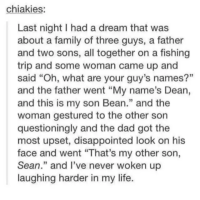 "Text - chiakies: Last night I had a dream that was about a family of three guys, a father and two sons, all together on a fishing trip and some woman came up and said ""Oh, what are your guy's names?"" and the father went ""My name's Dean, and this is my son Bean."" and the woman gestured to the other son questioningly and the dad got the most upset, disappointed look on his face and went ""That's my other son, Sean."" and l've never woken up 55 laughing harder in my life."