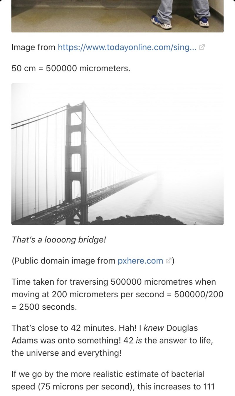 Text - Image from https://www.todayonline.com/sing... Z 50 cm = 500000 micrometers. That's a loooong bridge! (Public domain image from pxhere.com 2) Time taken for traversing 500000 micrometres when moving at 200 micrometers per second = 500000/200 %3D = 2500 seconds. That's close to 42 minutes. Hah! I knew Douglas Adams was onto something! 42 is the answer to life, the universe and everything! If we go by the more realistic estimate of bacterial speed (75 microns per second), this increases to