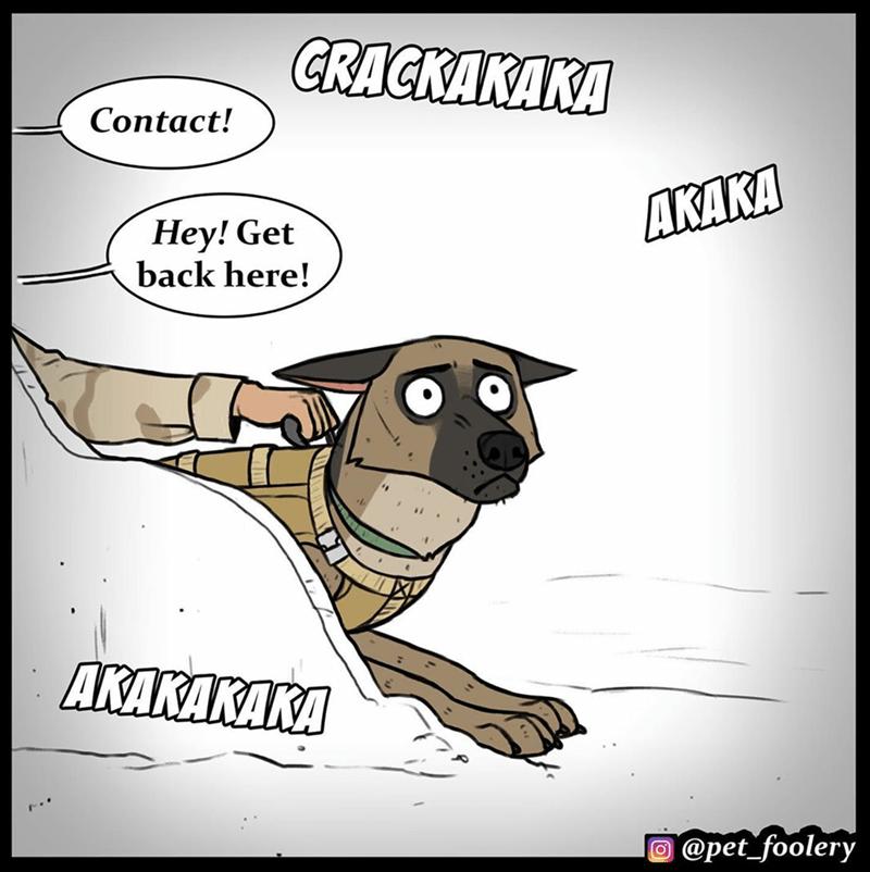 Cartoon - CRAСКАКАКД Contact! ДКАКД Hey! Get back here! AKAKAKAKA O @pet_foolery