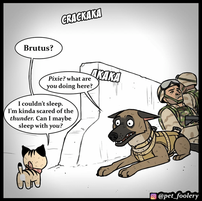 Cartoon - CRACKAKA Brutus? ORAKA Pixie? what are you doing here? I couldn't sleep. I'm kinda scared of the thunder. Can I maybe sleep with you? O @pet_foolery