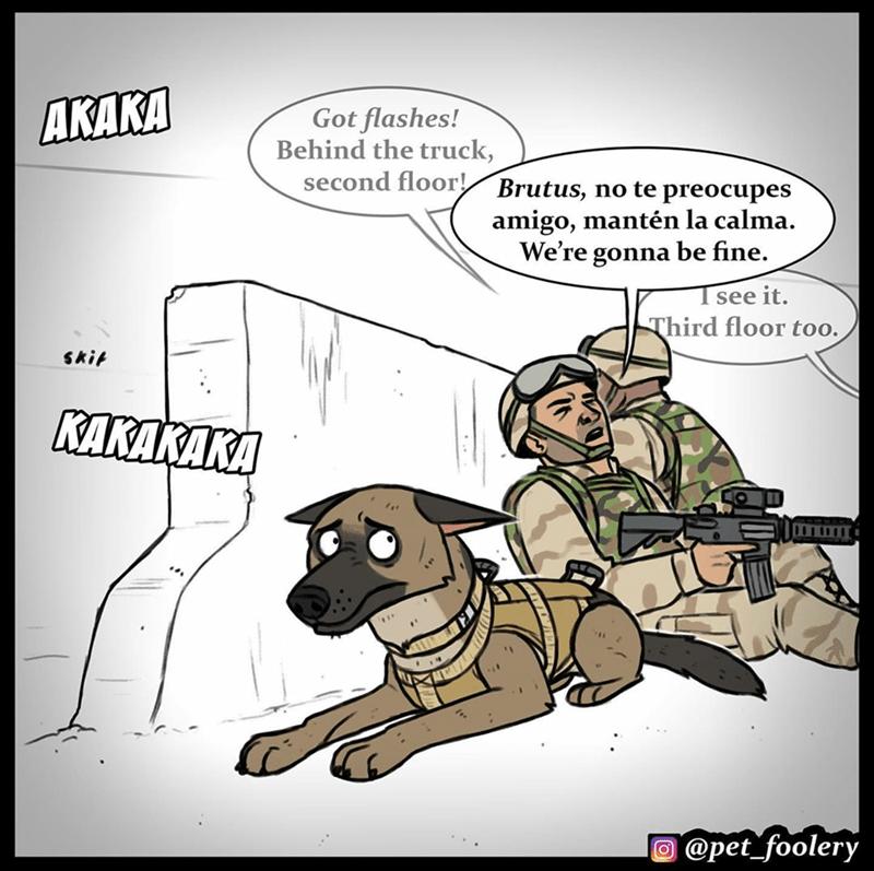 Cartoon - AKAKA Got flashes! Behind the truck, second floor Brutus, no te preocupes amigo, mantén la calma. We're gonna be fine. see it. Third floor too. skit KAKAKAKA O @pet_foolery