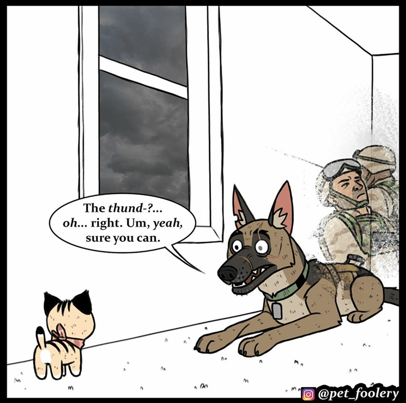 Cartoon - The thund-?.. oh... right. Um, yeah, sure you can. O @pet_foolery