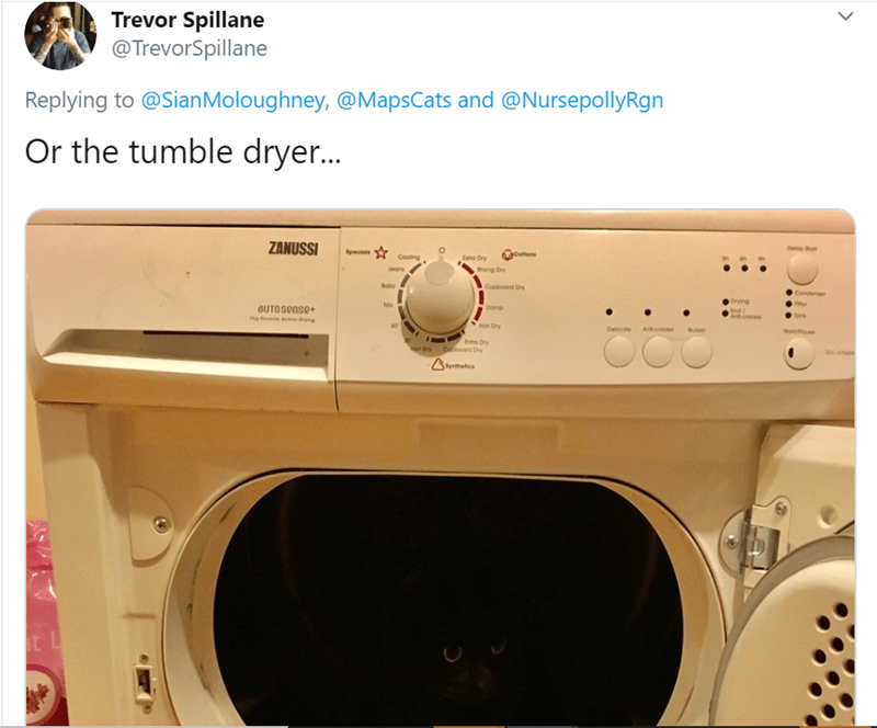 Major appliance - Trevor Spillane @TrevorSpillane Replying to @SianMoloughney, @MapsCats and @NursepollyRgn Or the tumble dryer.. ZANUSSI De thot pesa otana Cooing Da Dry ong Dry Jeane oby Cupboad Dry Conderser Drying Damp OUTOSense+ Ind Anbcosose fonk ron Dry Delcote Acreose Buer Dry Coard Dry on Dry Satics