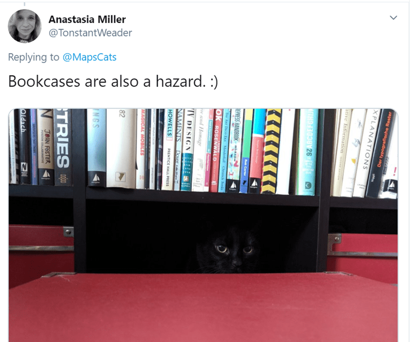 Shelf - Anastasia Miller @TonstantWeader Replying to @MapsCats Bookcases are also a hazard. :) XPLANATIONS Der typografische Raster lative Information e vomon lain kDeg Rob Certer REPRESS HANOBOOK-tase Tie Ar Deco ERA Mmdenhal Chronice Books LAURIE OK ROSENWALD Hartad e and Homage TV DESIGN NAMENTS Dover HOWELLS PRENTICE HALL PRESS MAGICAL MOBILES 82 INGS TRIES N JOHN FOSTER FUSION COLLAaORATVE Oldach