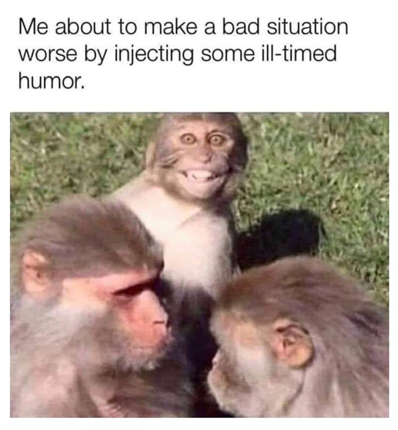"Funny meme that reads, ""Me about to make a bad situation worse by injecting some ill-timed humor"" above a photo of two monkeys in the middle of an argument and one monkey smiling deviously in the background"