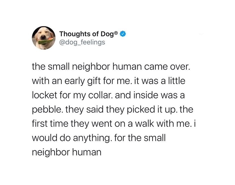 Text - Thoughts of Dog® @dog_feelings the small neighbor human came over. with an early gift for me. it was a little locket for my collar. and inside was a pebble. they said they picked it up. the first time they went on a walk with me. i would do anything. for the small neighbor human