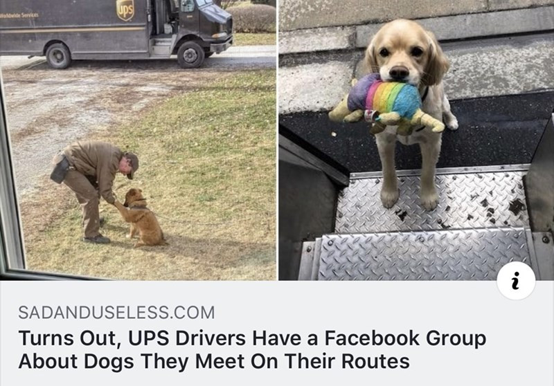 Dog - ups Wloldwide Service SADANDUSELESS.COM Turns Out, UPS Drivers Have a Facebook Group About Dogs They Meet On Their Routes