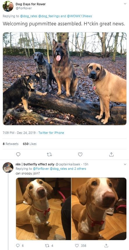 Text - Dog - Dog Days for Rover @ForRover Replying to @dog_rates @dog_feelings and @wOWK13News Welcoming pupmmittee assembled. H*ckin great news. 7:09 PM · Dec 24, 2019 - Twitter for iPhone 8 Retweets 650 Likes rên | butterfly effect soty @captainkaibaek - 15h Replying to @ForRover @dog_rates and 2 others can snoopy join? 6. 356