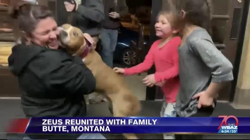 Text - People - ZEUS REUNITED WITH FAMILY BUTTE, MONTANA YLARS WEAZ 6:34 /35