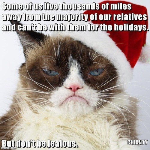 Cat - Some of us live thousands of miles away trom the majority of our relatives and can'tbe with them for the holidays. Butdon'tbe jealous. CHIANTY imgflip.com