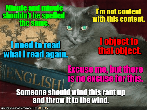Cat - Minute and minute shouldn't be spelled the same. I'm not content with this content. lobject to thatobject. Uneed to read what I read again. Excuse me, butthere ONGLISH SnOGKCUSefortis, isno excuse for this. Someone should wind this rant up and throw it to the wind. ICANHASCHEEZBURGER.COM