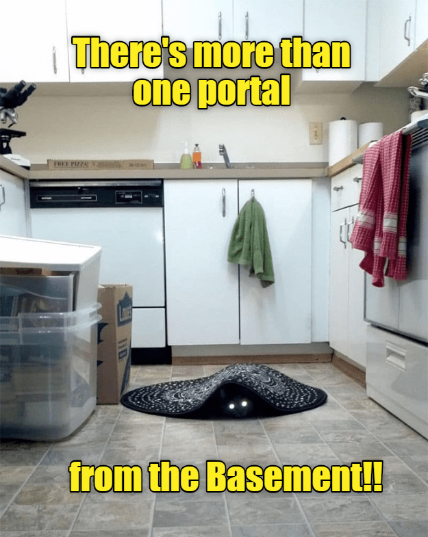 Room - There's more than one portal TREE PIZZA from the Basement!