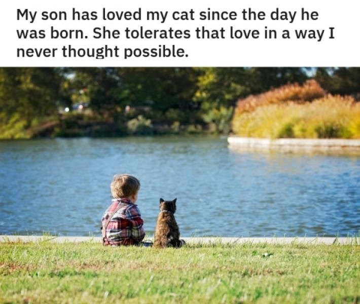 Friendship - My son has loved my cat since the day he was born. She tolerates that love in a way I never thought possible.