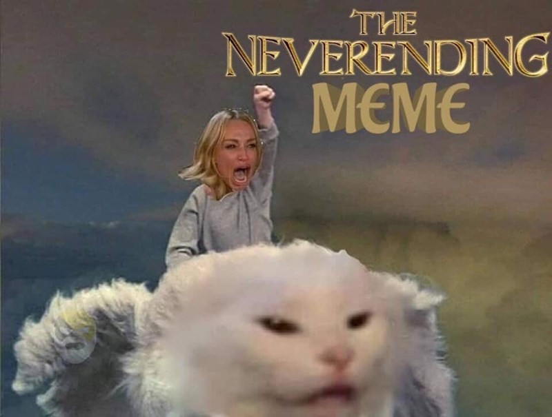Cat - NEVERENDING MEME