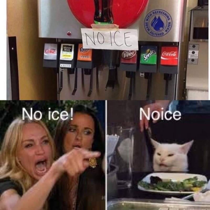 Cat - REF NO ICE FILTERID Coke OLANGE CocaCola Sprite DRANE No ice! Noice ISHING HAIA HADE WATER 1D