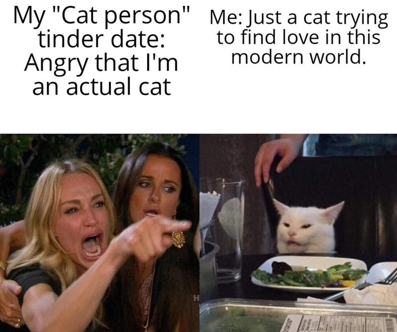 "Facial expression - My ""Cat person"" Me: Just a cat trying tinder date: Angry that I'm an actual cat to find love in this modern world."