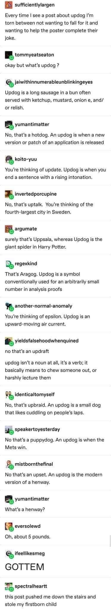 Text - A sufficientlylargen Every time I see a post about updog I'm torn between not wanting to fall for it and wanting to help the poster complete their joke. tommyeatseaton okay but what's updog ? jaiwithinnumerableunblinkingeyes Updog is a long sausage in a bun often served with ketchup, mustard, onion e, and/ or relish. yumantimatter No, that's a hotdog. An updog is when a new version or patch of an application is released koito-yuu You're thinking of update. Updog is when you end a sentence