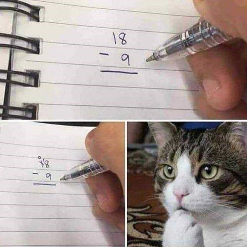 3 pics showing a cat attempting to solve a math problem 18-9 and not succeeding