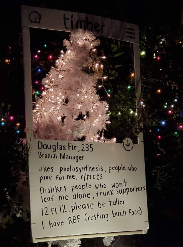 Christmas tree - timber timberE Douglas Fir, 235 Branch Manager Likes: photosynthesis, people who pine for me, r/trees Dislikes: people who won't leaf me alone, trunk supporters 12 ft 12, please be taller I have RBF (resting birch face)