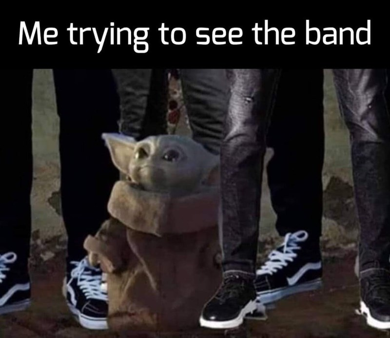 Cat - Me trying to see the band