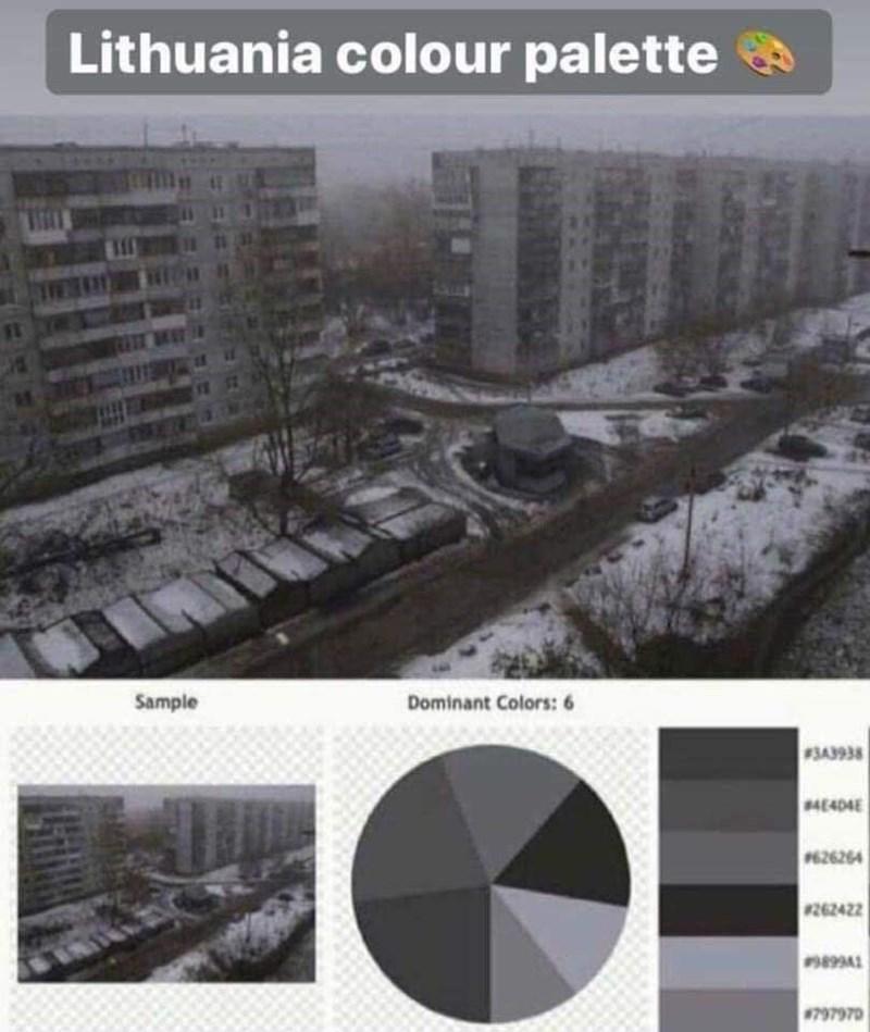 Product - Lithuania colour palette Sample Dominant Colors: 6 #3A3938 4E404E 626264 #262422 797970