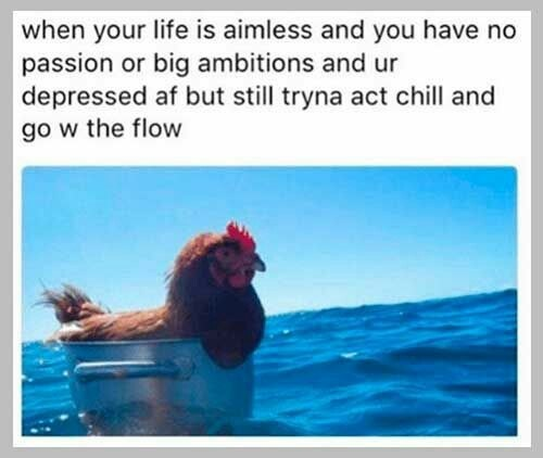 Adaptation - when your life is aimless and you have no passion or big ambitions and ur depressed af but still tryna act chill and go w the flow