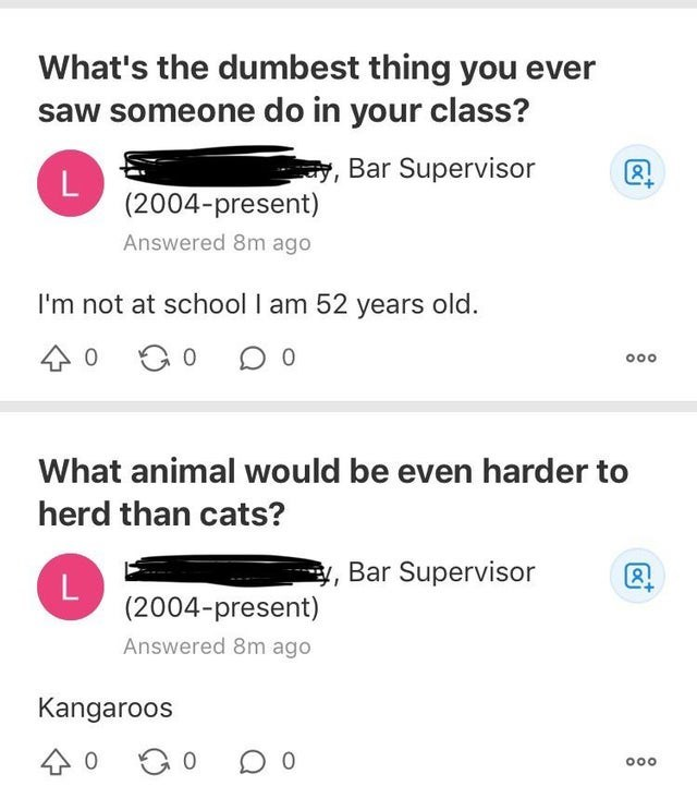 Text - What's the dumbest thing you ever saw someone do in your class? 1, Bar Supervisor (2004-present) Answered 8m ago I'm not at school I am 52 years old. What animal would be even harder to herd than cats? Bar Supervisor (2004-present) Answered 8m ago Kangaroos 000