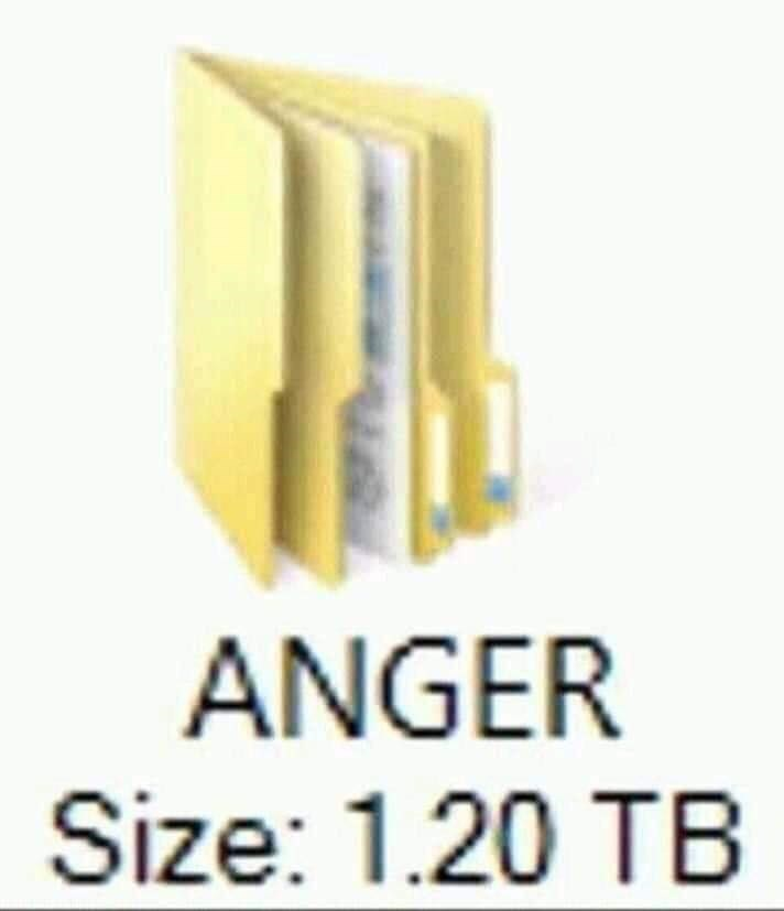 Yellow - ANGER Size: 1.20 TB