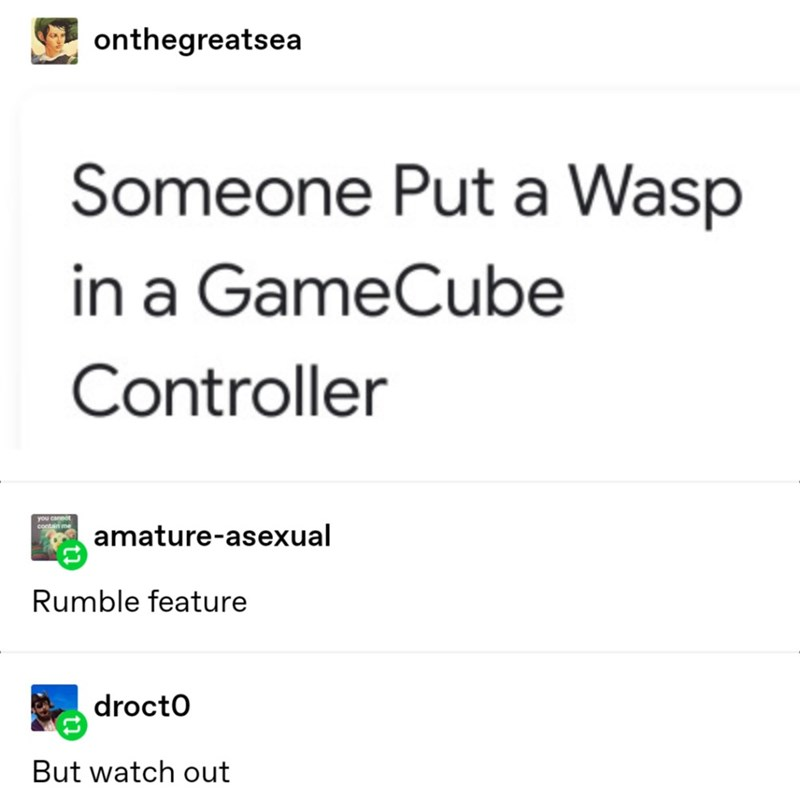 Text - onthegreatsea Someone Put a Wasp in a GameCube Controller you cannot contain me amature-asexual Rumble feature drocto But watch out
