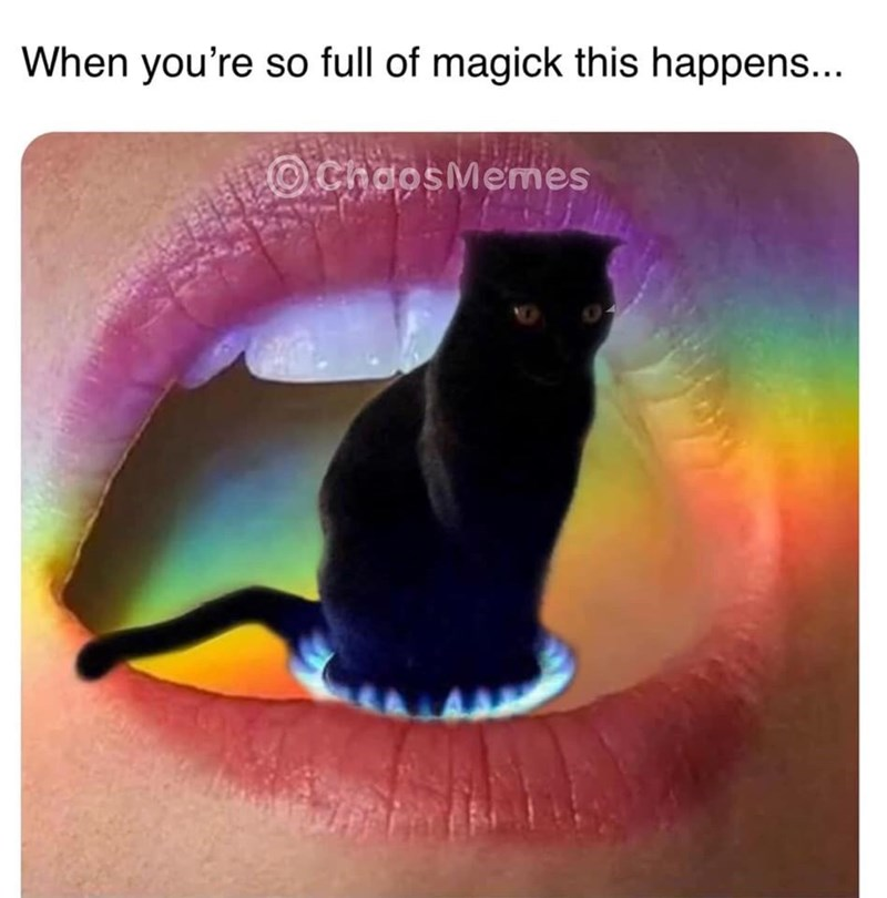 Cat - When you're so full of magick this happens... OChoosMemes