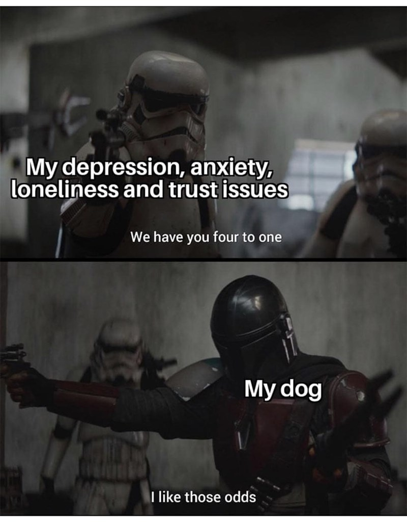 Helmet - My depression, anxiety, loneliness and trust issues We have you four to one My dog I like those odds