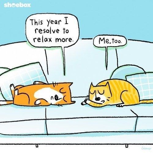 Cartoon - sheebox This year I resolve to relax more. Me,too.