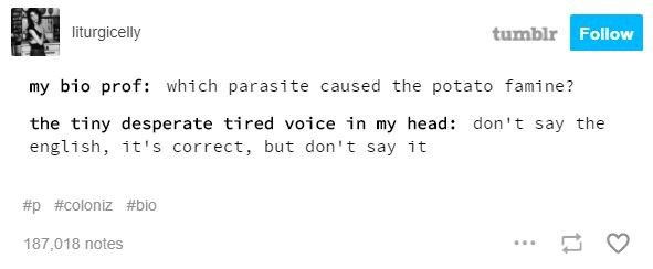 Text - tumblr Follow liturgicelly my bio prof: which parasite caused the potato famine? the tiny desperate tired voice in my head: don't say the english, it's correct, but don't say it #p #coloniz #bio 187,018 notes
