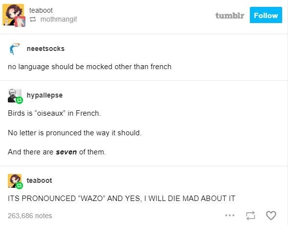 """Text - teaboot tumblr Follow E mothmangif neeetsocks no language should be mocked other than french hypallepse Birds is """"oiseaux"""" in French. No letter is pronunced the way it should. And there are seven of them. teaboot ITS PRONOUNCED """"WAZO"""" AND YES, I WILL DIE MAD ABOUT IT 263,686 notes"""