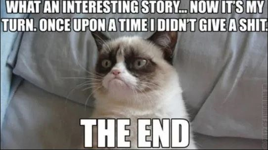 Cat - WHAT AN INTERESTING STORY. NOW IT'S MY TURN. ONCE UPON A TIME I DIDN'T GIVE A SHIT THE END