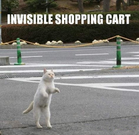 Photo caption - INVISIBLE SHOPPING CART