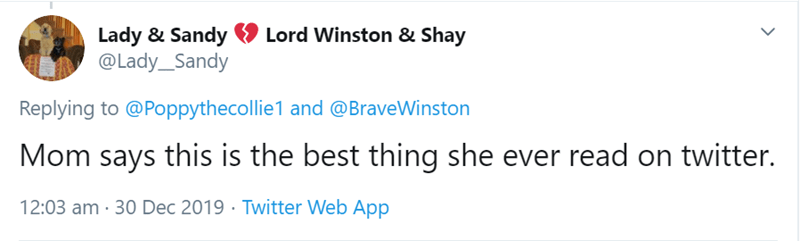 Text - Lord Winston & Shay Lady & Sandy @Lady_Sandy Replying to @Poppythecollie1 and @BraveWinston Mom says this is the best thing she ever read on twitter. 12:03 am · 30 Dec 2019 · Twitter Web App