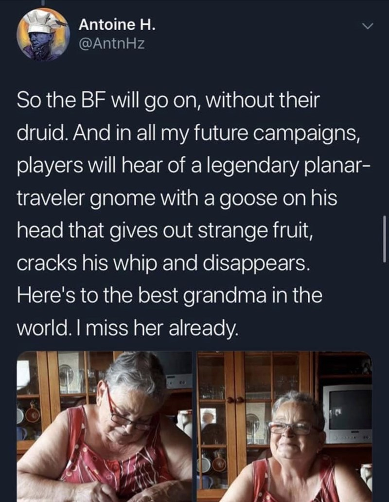 Text - Text - Antoine H. @AntnHz So the BF will go on, without their druid. And in all my future campaigns, players will hear of a legendary planar- traveler gnome with a goose on his head that gives out strange fruit, cracks his whip and disappears. Here's to the best grandma in the world. I miss her already.
