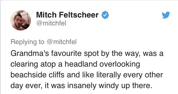 Text - Mitch Feltscheer @mitchfel Replying to @mitchfel Grandma's favourite spot by the way, was a clearing atop a headland overlooking beachside cliffs and like literally every other day ever, it was insanely windy up there.
